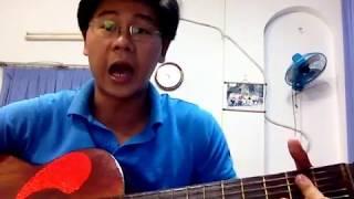 Phượng Hồng ( guitar )