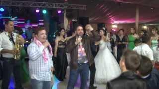 Nunta anului 2013 Nicusor si Nicoleta - Recital SALAM