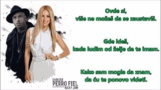 Shakira - Perro Fiel (Karaoke Version ) ft. Nicky Jam Ⓜ️