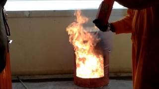 The Fire Terminator MILKY SLAM Time Test Survey