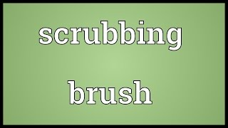Scrubbing brush Meaning