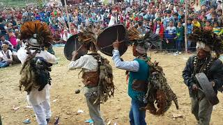 How wonderful  Dance in Nepal with animals @Jhaki 2075