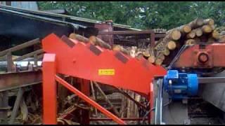 Log ladder / Stepped feeder