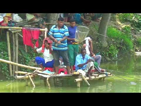 Amazing Fish Catching Skills | Village Fish Catching In Bangladesh