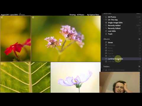 Ratings, Flags, and Folders: How to Organize Your Photos in Luminar