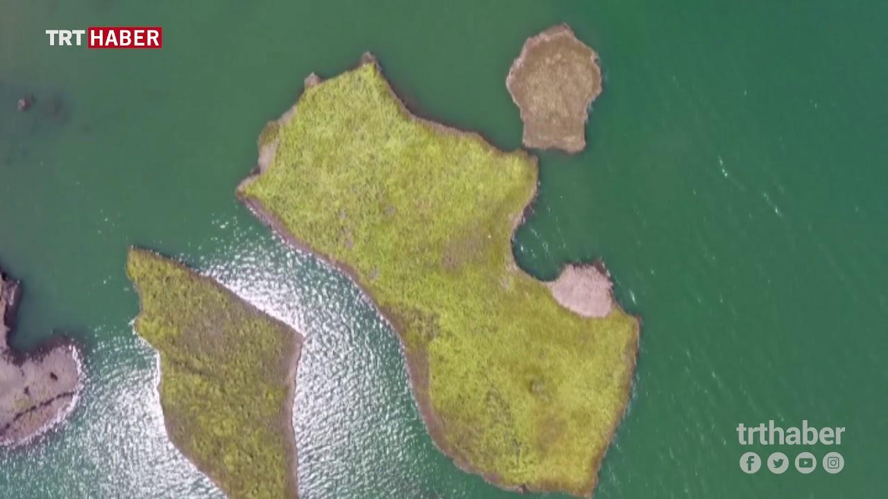 Adıyaman'ın yüzen adaları korunacak