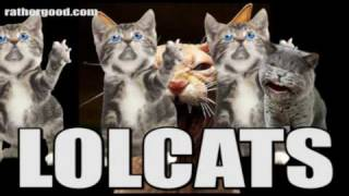 Lolcats song