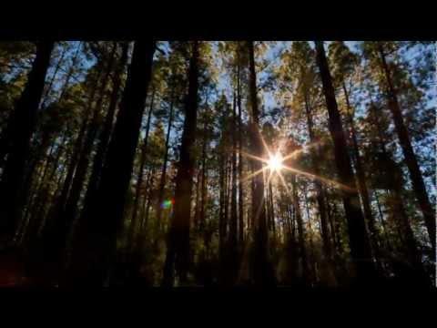 Ludovico Einaudi - The Mountain