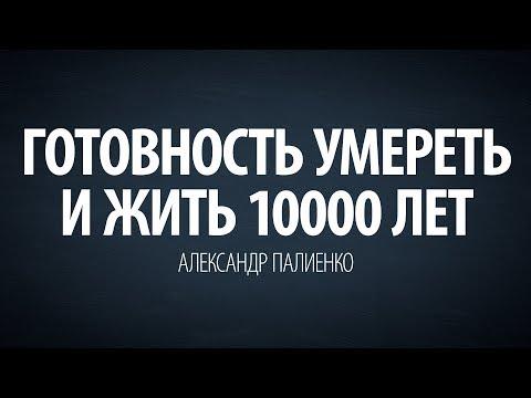 Готовность умереть и жить 10000 лет. Александр Палиенко.