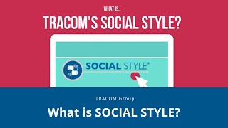 What is SOCIAL STYLE?