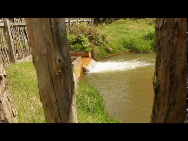 Waitangi Soda Springs - Nau mai, Haere mai!