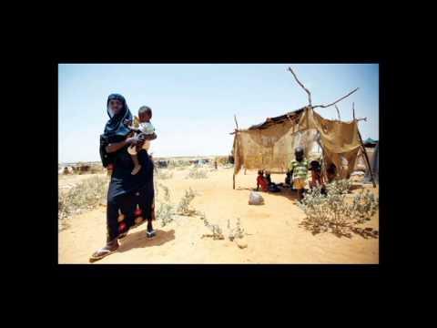 وليد دارفور غناء سامى المغربى