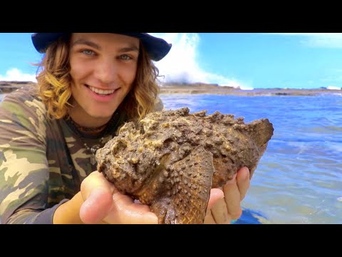 Catching Worlds MOST VENOMOUS FISH (STONEFISH) Pt.2