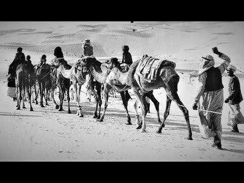 UAE :  HISTORY of ABU DHABI Full AMAZING Documentary