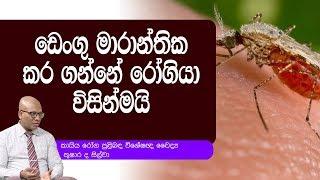 ඩෙංගු මාරාන්තික කර ගන්නේ රෝගියා විසින්මයි | Piyum Vila | 11-10-2019 | Siyatha TV Thumbnail