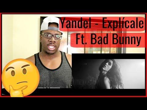 Yandel - Explícale (Official Video) ft. Bad Bunny Reaction (Reaccion) | Beecher Dynasty Reacts