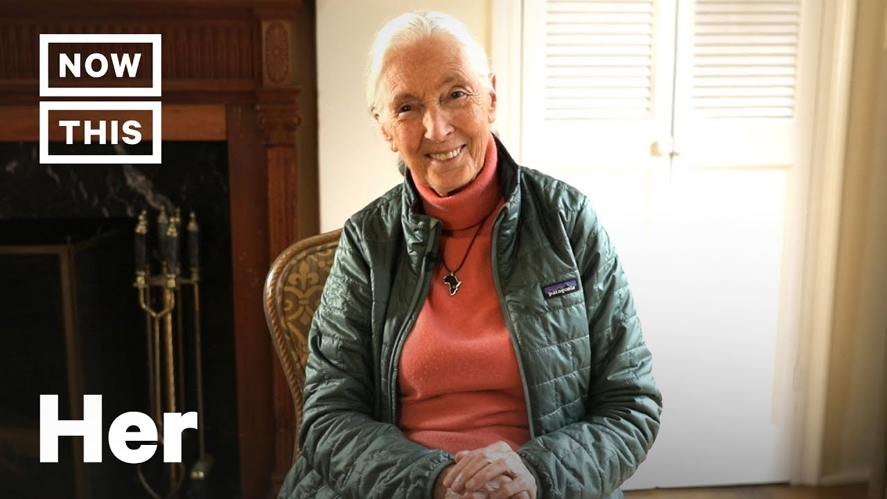 How to Convince People Climate Change Is Real, According to Jane Goodall | NowThis