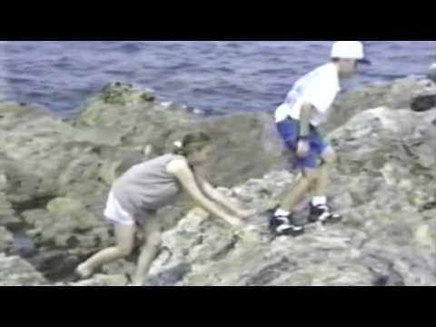 Maine 1995