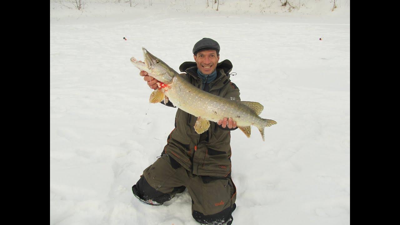 реже ловля щуки на жерлицы зимой на реке рассмотрим как