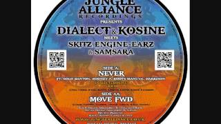 Never ft Roots Manuva, Solo Banton, Rodney P and Darrison - Dialect And Kosine Official Remix