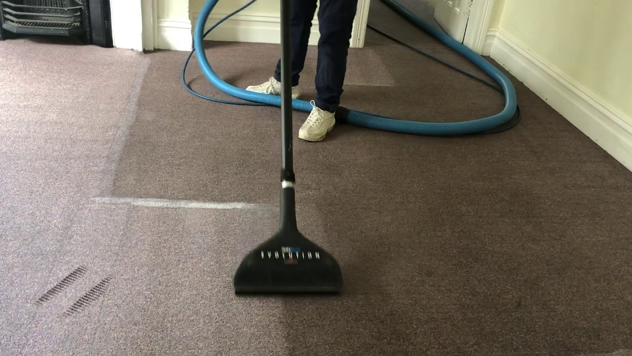 The Steam Cleaners Carpet Cleaning