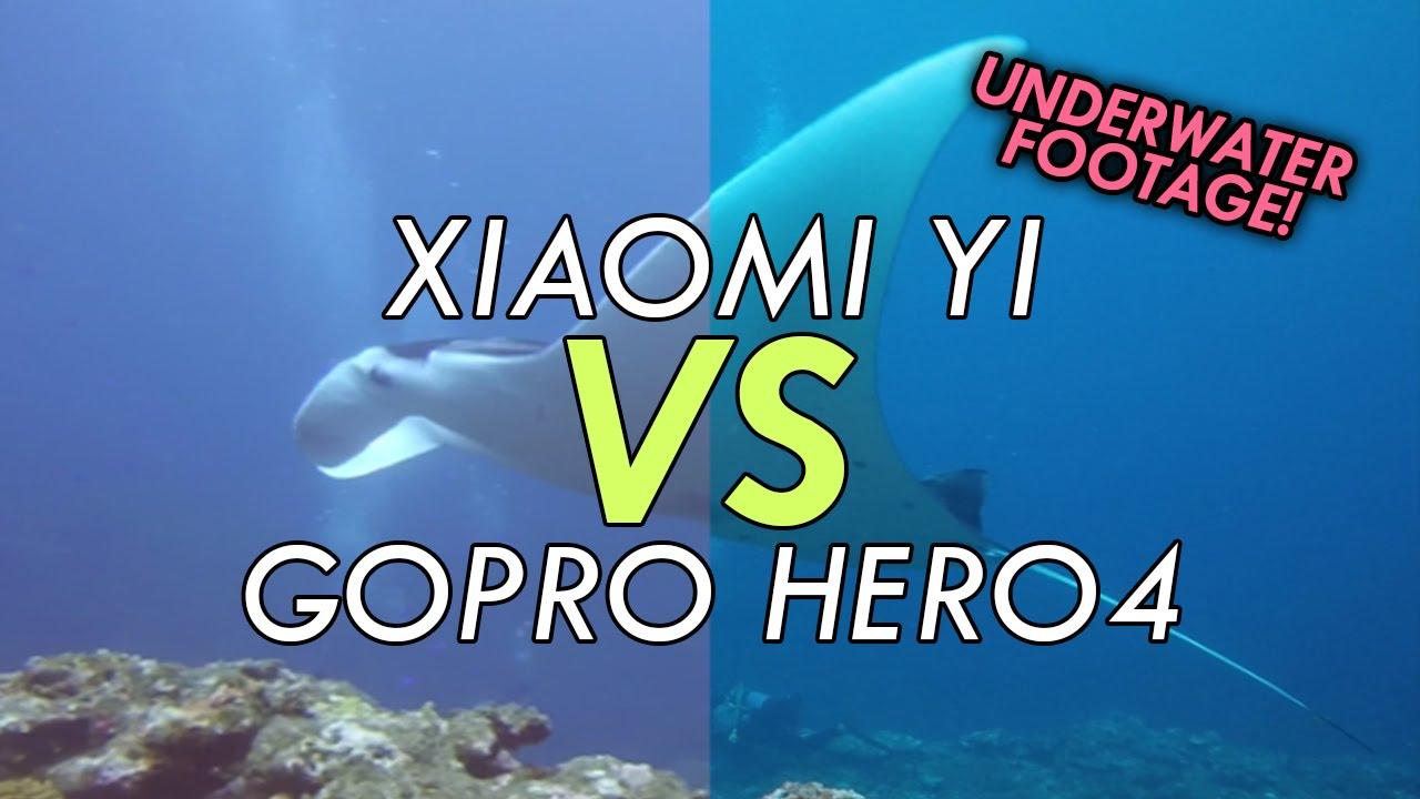 Xiaomi yi vs gopro hero action camera comparison cameralah com gopro - Xiaomi Yi Versus Gopro Hero4 Black Comparison Video Underwater Footage Of Manta Rays Youtube