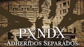 PXNDX - Adheridos Separados