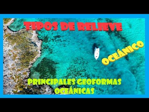 Relieve Oceánico. Principales Geoformas En Los Océanos.