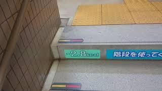 【東急病院最寄り駅】健康ステーション大岡山には階段に応援メッセージがあります