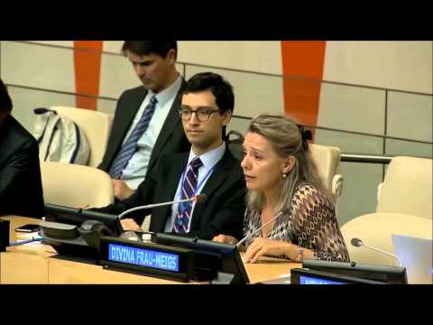 Divina Frau-Meigs, International Association Media & Communication Research, UN WSIS+10 consultation