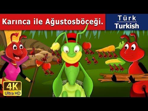 Karınca ile Ağustosböceği - Masal - çoçuk masalları dinle - 4K UHD - Türkçe peri masallar