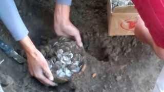 Археологические раскопки в Сайраме, нашли серебрянные монеты