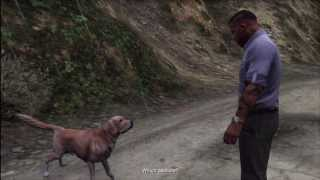 GTA V - Uncalculated Risk (Franklin talking to a dog again)