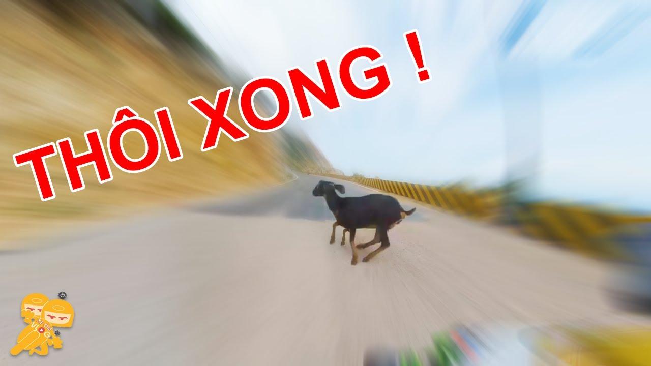 Chuyến Đi ĐỂ ĐỜI Của Biker Phú Thủy ZX10R Cùng Next Tour - Xe Ôm Vlog