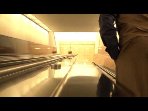 The Mockingbird-Official Music Video
