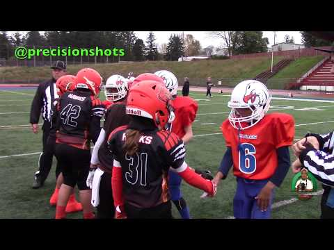 🔥🔥🔥 NW Facts GK Eagles 5 vs. Federal Way Hawks 2016 (Championship Game)