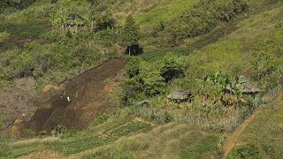 Joint agricultural projects benefit Papua New Guinea