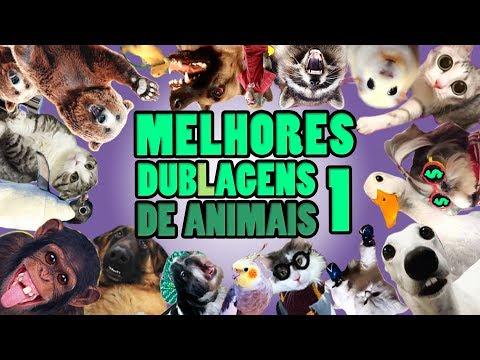 AS MELHORES DUBLAGENS DE ANIMAIS - PARTE 01