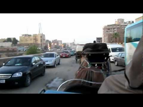 Horse Carriage ride in Luxor, Egypt