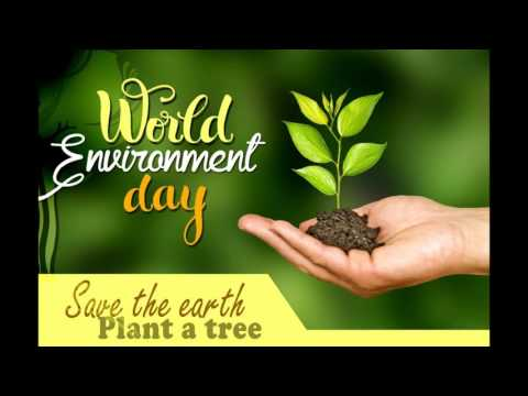 World Environment Day Slogans | Save The Environment