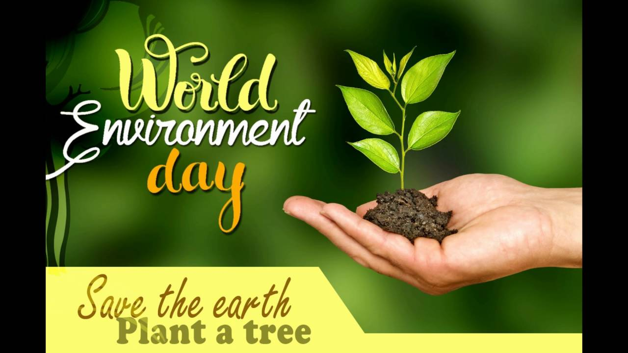 Image result for World Environment Day