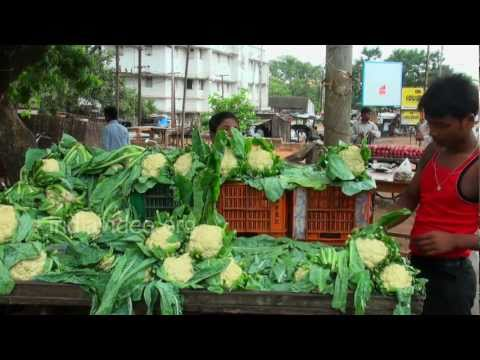 Cauliflower Seller in Bhubaneswar