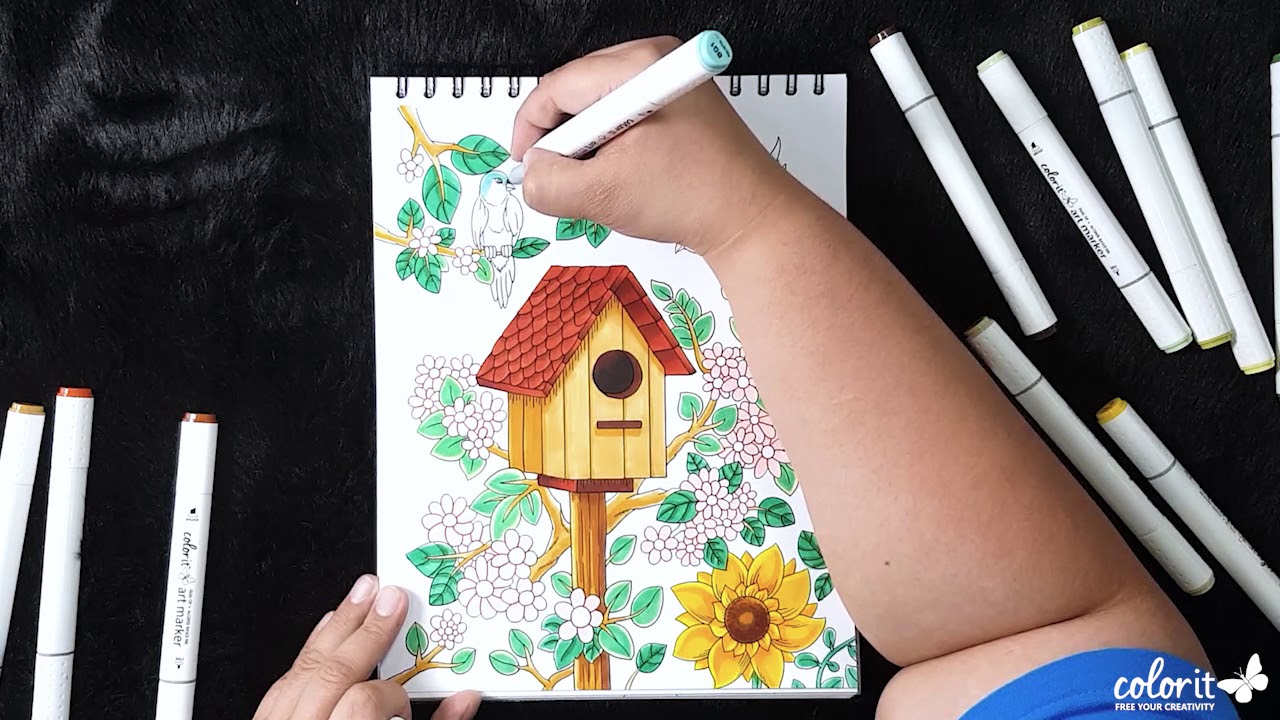 Freebie friday by colorit free adult coloring pages birdhouse coloring time lapse