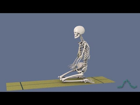 Yoga Poses: Virasana Hero's Pose