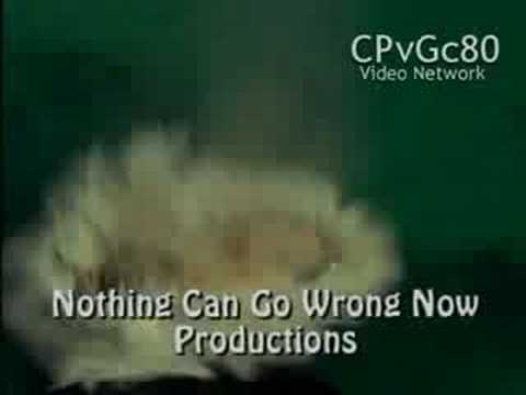 Nothing Can Go Wrong Now/Icon Productions/NBC Universal