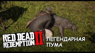 Легендарная ПУМА в Red Dead Redemption 2