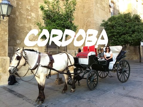 TRAVEL DIARY | Cordoba, Spain