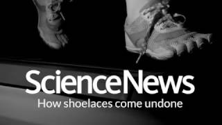 How shoelaces come undone | Science News