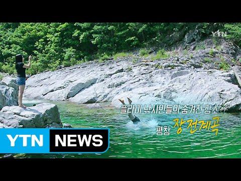 [영상] 강원도 비밀의 계곡 3곳 추천! / YTN (Yes! Top News)