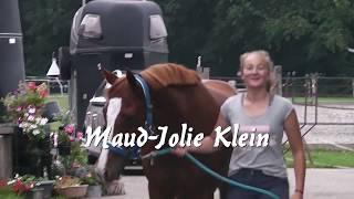 preview docu deel 1  ' When a horse says no ' maak kennis met de hoofdrolspelers!